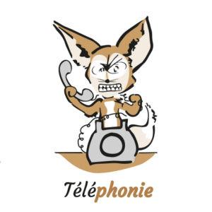 Cours audio pour aveugle ou malvoyant : Prise en main de l'iPhone