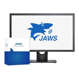 JAWS 2020 - Logiciel de revue d'écran